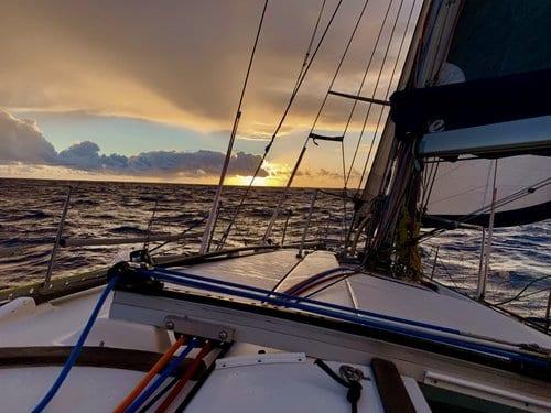 Sydney to Auckland Ocean Race